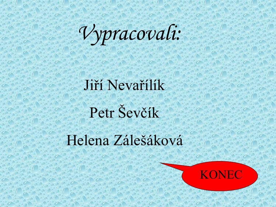 Vypracovali: Jiří Nevařílík Petr Ševčík Helena Zálešáková KONEC