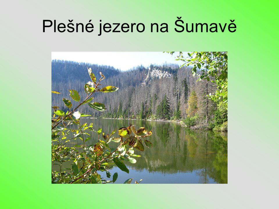 Plešné jezero na Šumavě
