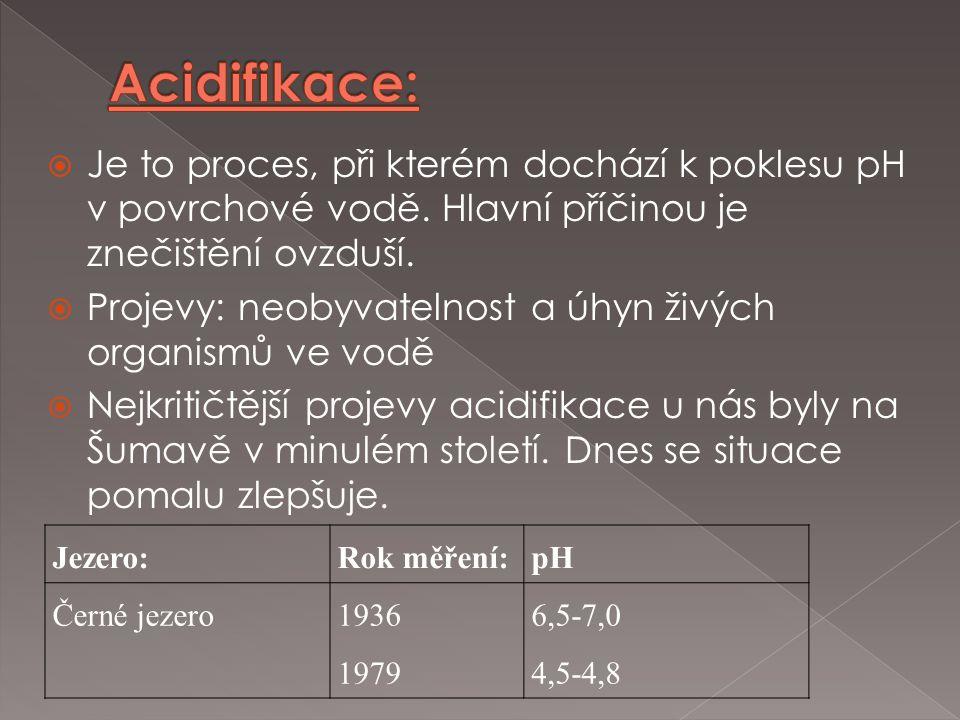 Acidifikace: Je to proces, při kterém dochází k poklesu pH v povrchové vodě. Hlavní příčinou je znečištění ovzduší.