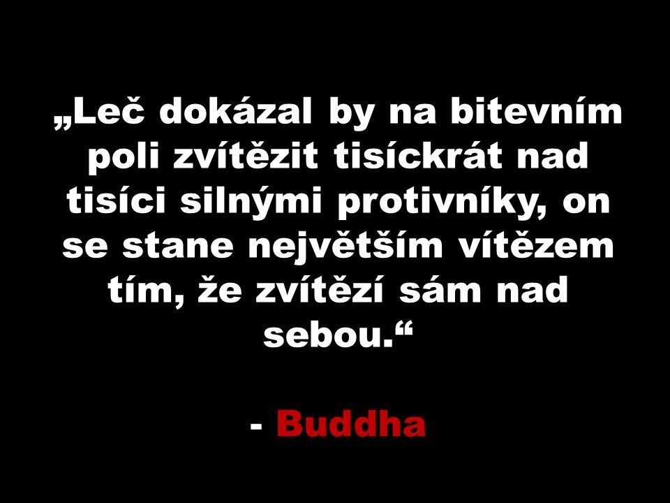 """""""Leč dokázal by na bitevním poli zvítězit tisíckrát nad tisíci silnými protivníky, on se stane největším vítězem tím, že zvítězí sám nad sebou. - Buddha"""