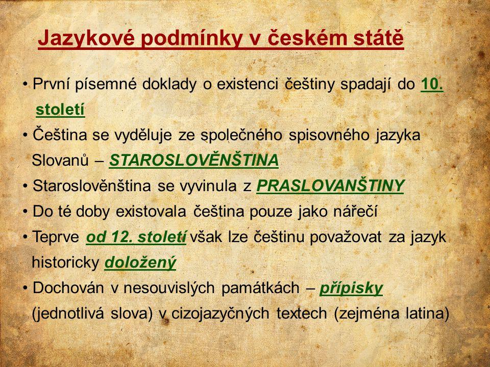 Jazykové podmínky v českém státě