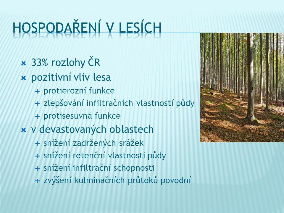 hospodaření v lesích 33% rozlohy ČR pozitivní vliv lesa