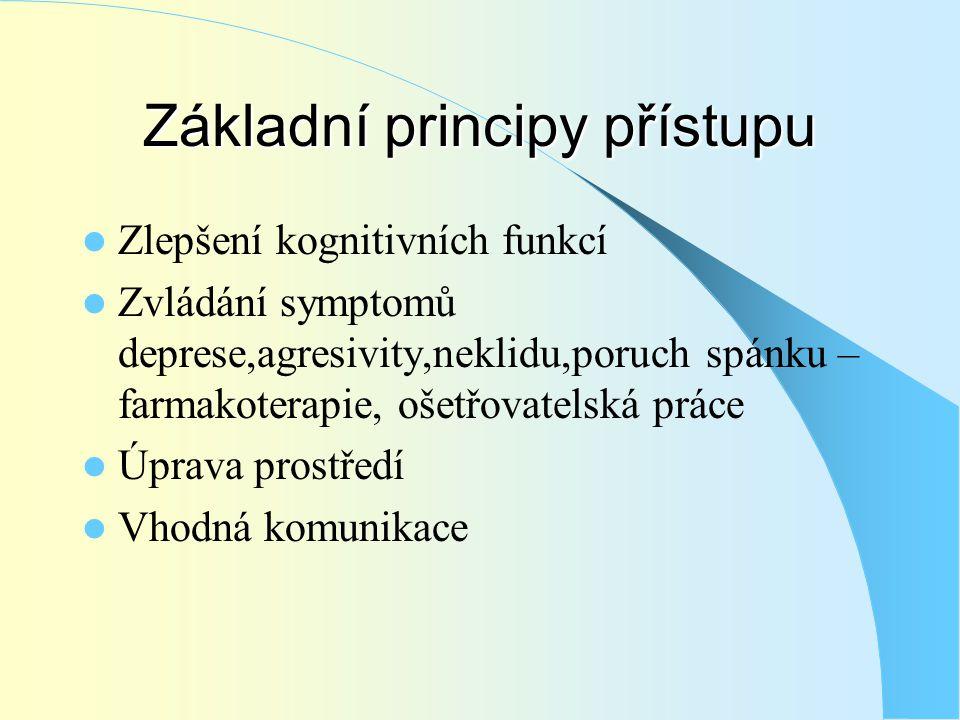 Základní principy přístupu