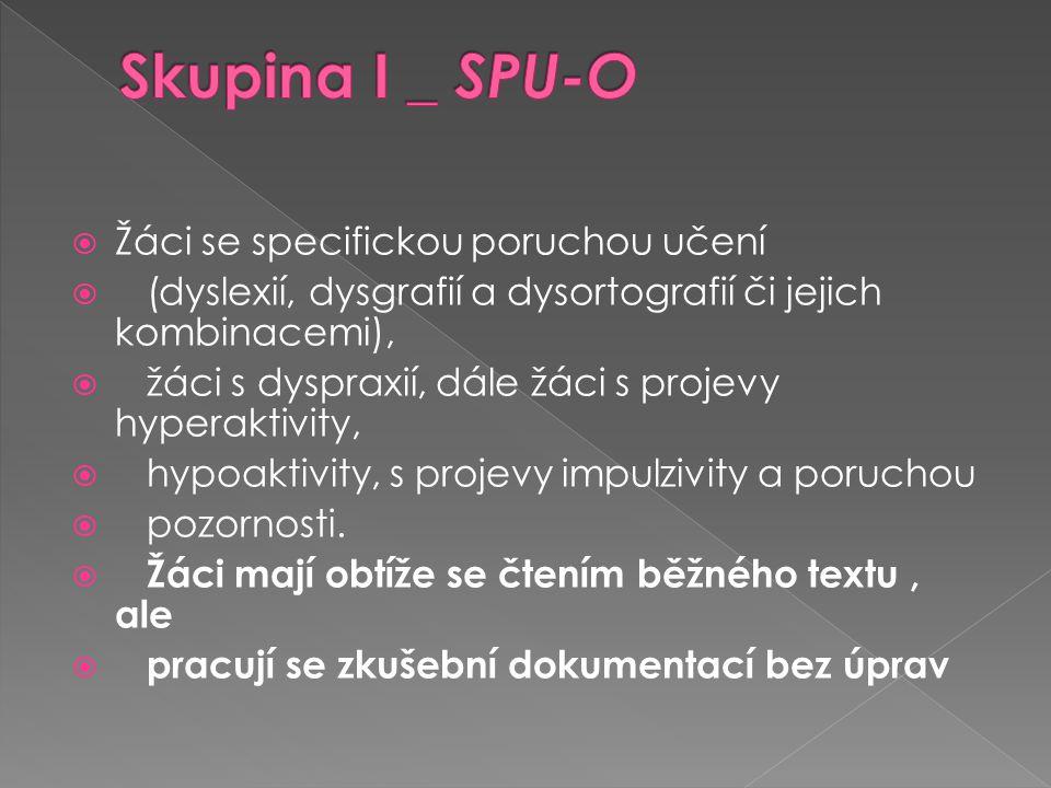 Skupina I _ SPU-O Žáci se specifickou poruchou učení