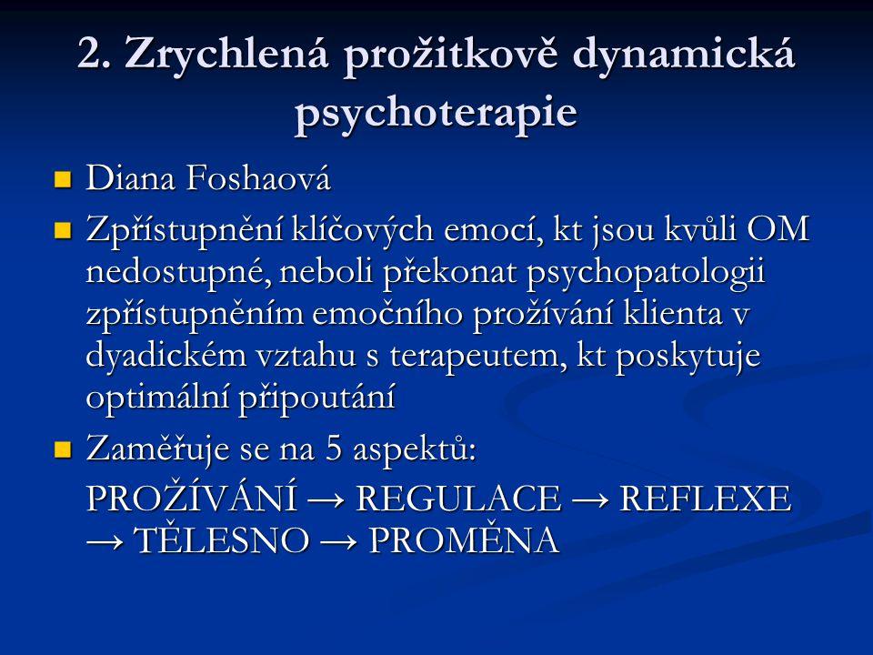 2. Zrychlená prožitkově dynamická psychoterapie