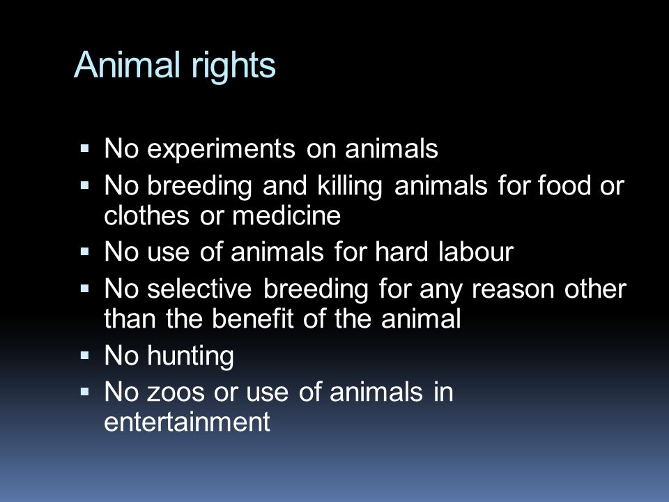 Animal rights No experiments on animals