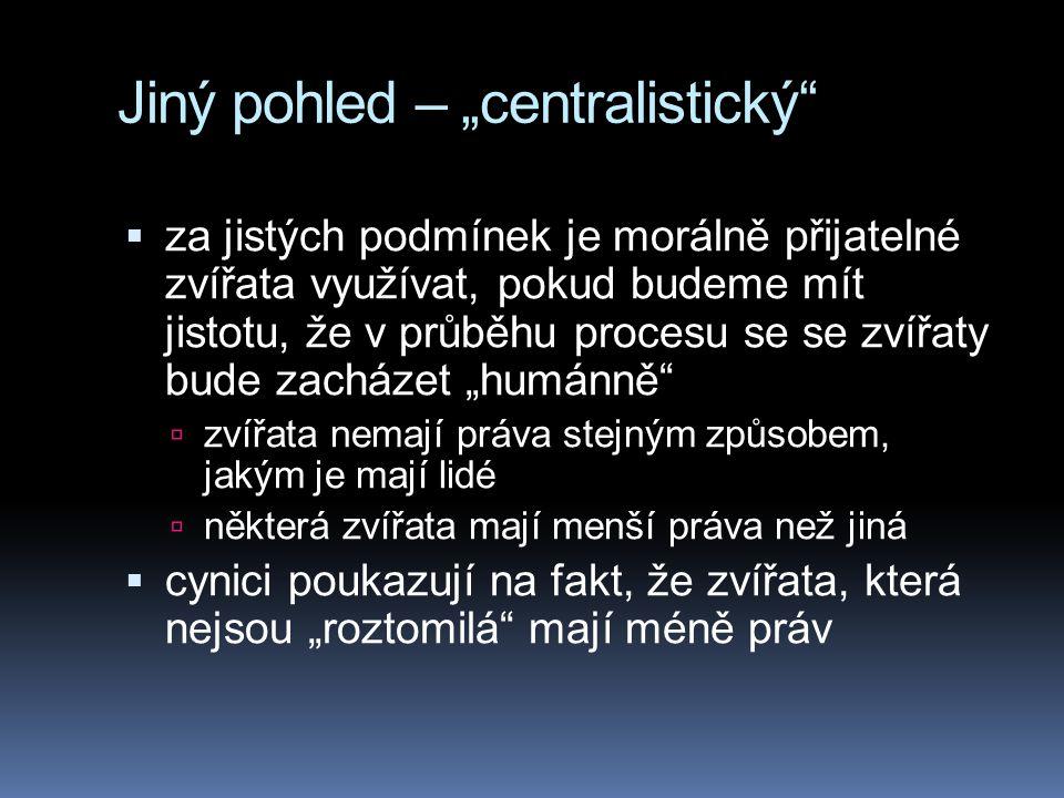 """Jiný pohled – """"centralistický"""