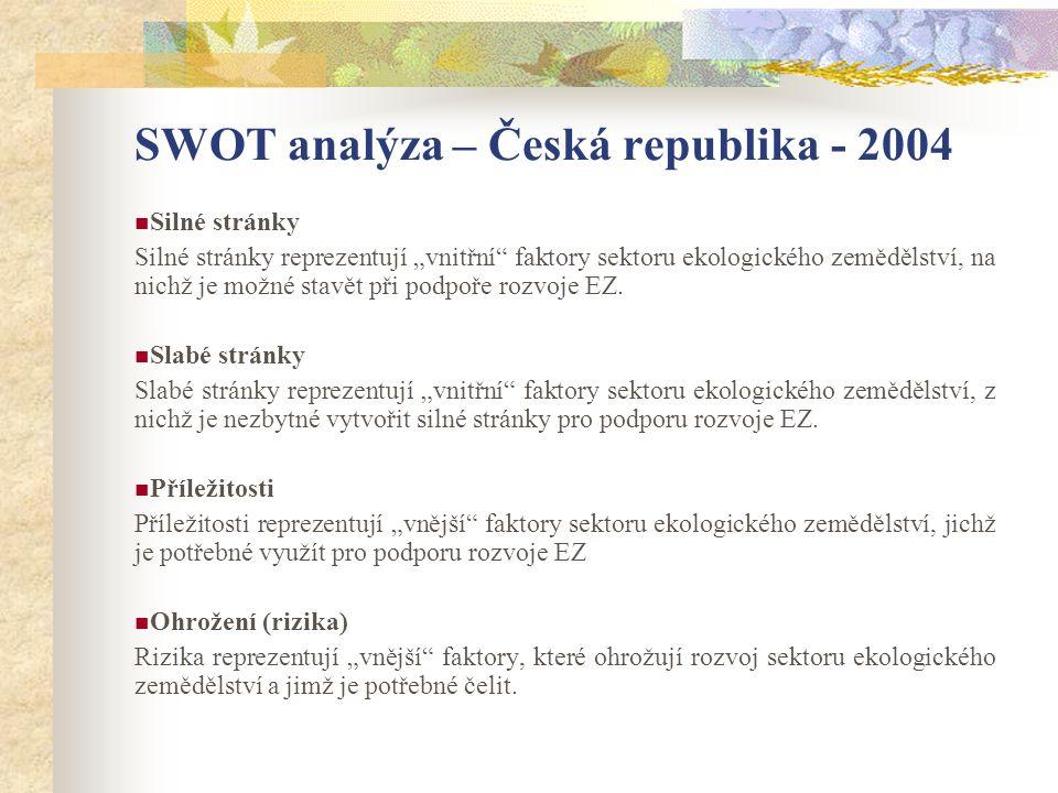 SWOT analýza – Česká republika - 2004