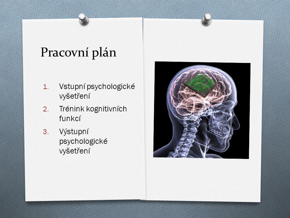 Pracovní plán Vstupní psychologické vyšetření