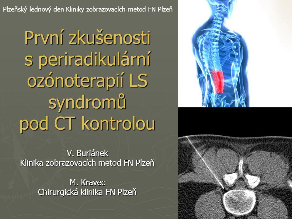 Plzeňský lednový den Kliniky zobrazovacích metod FN Plzeň