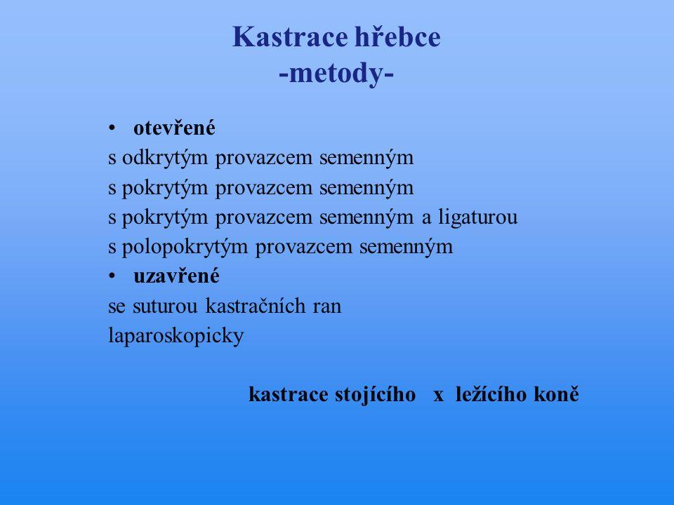Kastrace hřebce -metody-