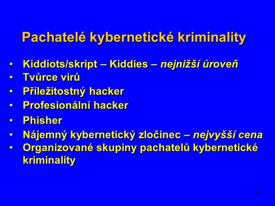 Pachatelé kybernetické kriminality