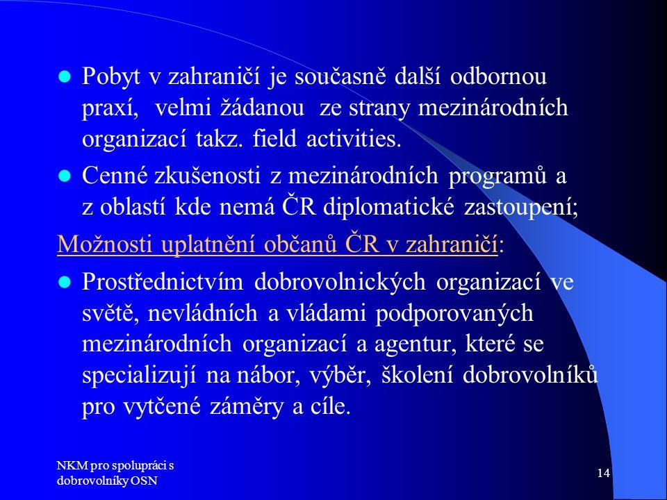 Možnosti uplatnění občanů ČR v zahraničí: