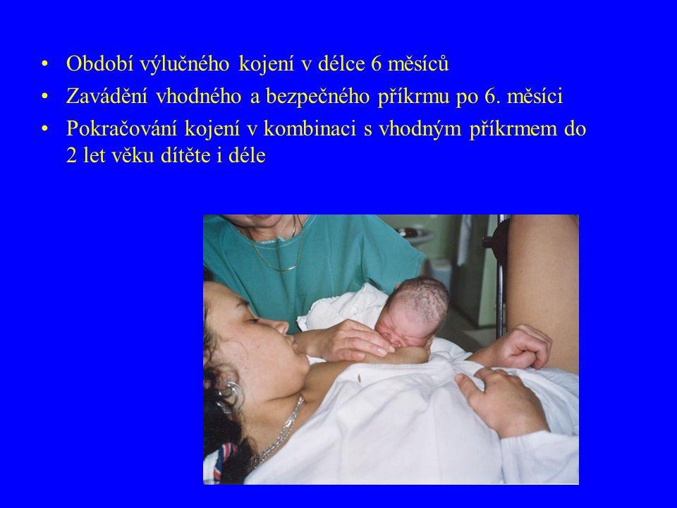 Období výlučného kojení v délce 6 měsíců