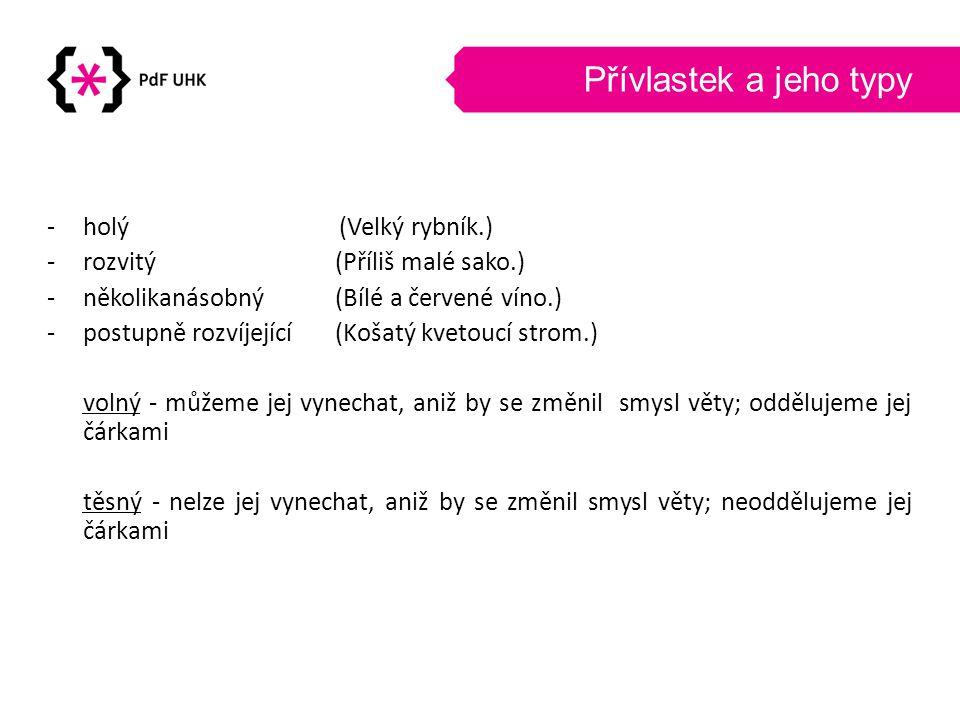 Přívlastek a jeho typy holý (Velký rybník.)