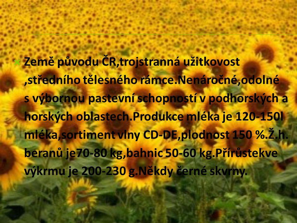 Země původu ČR,trojstranná užitkovost ,středního tělesného rámce