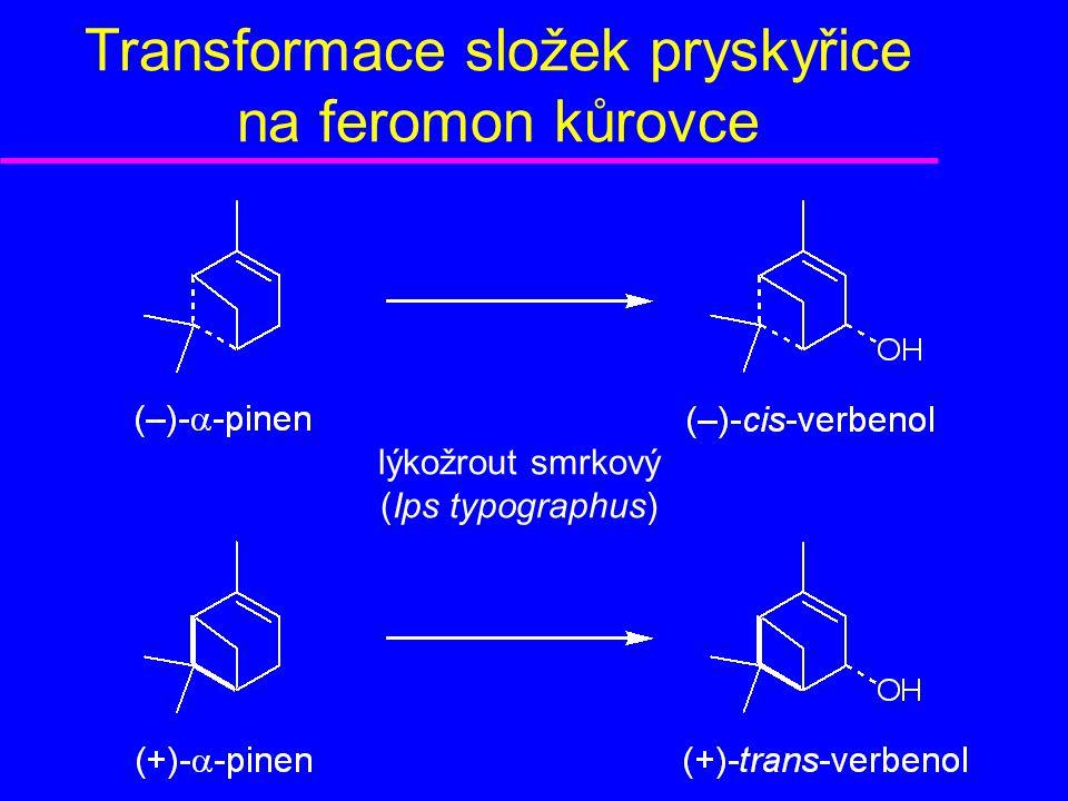 Transformace složek pryskyřice na feromon kůrovce