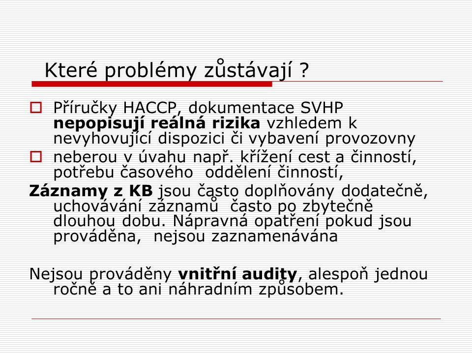 Které problémy zůstávají