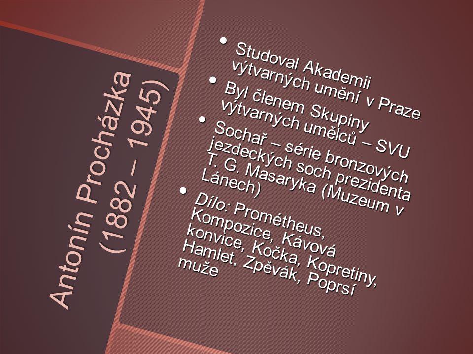 Studoval Akademii výtvarných umění v Praze