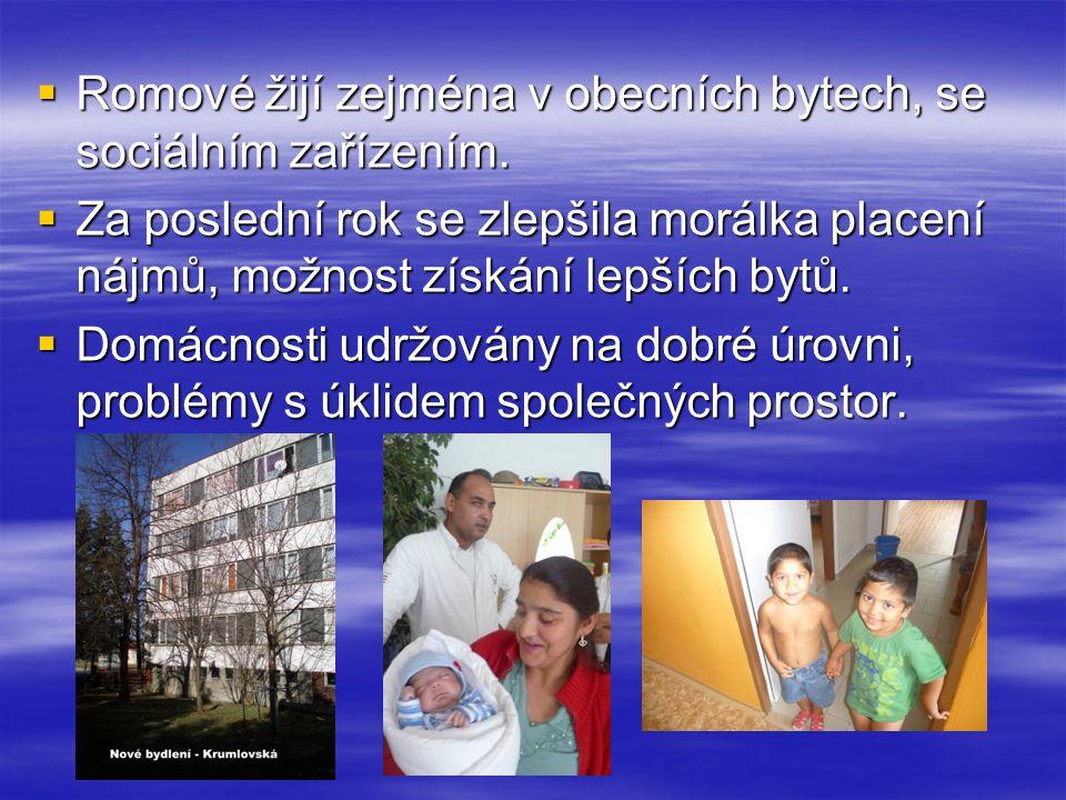 Romové žijí zejména v obecních bytech, se sociálním zařízením.