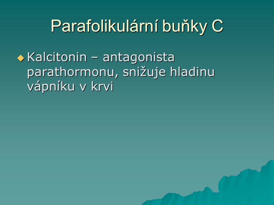 Parafolikulární buňky C