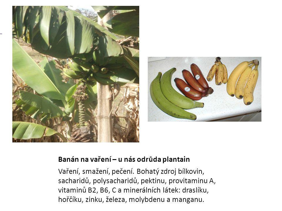 Banán na vaření – u nás odrůda plantain