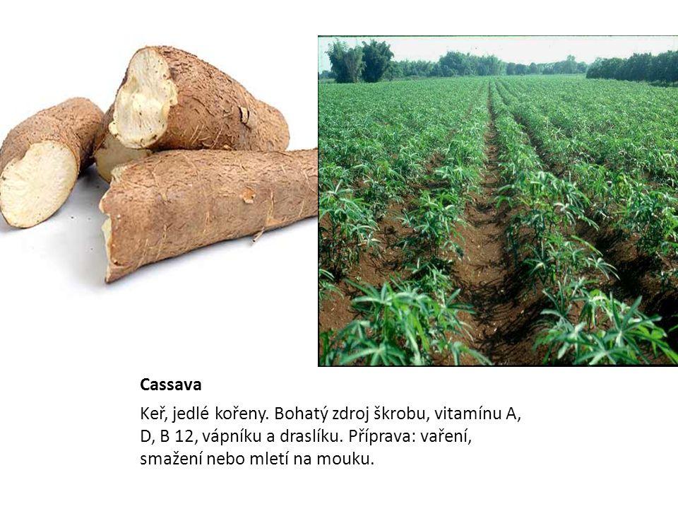 Cassava Keř, jedlé kořeny. Bohatý zdroj škrobu, vitamínu A, D, B 12, vápníku a draslíku.