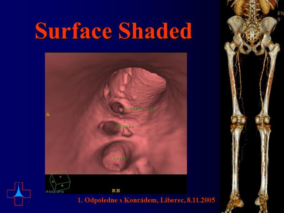 Surface Shaded 1. Odpoledne s Konrádem, Liberec, 8.11.2005