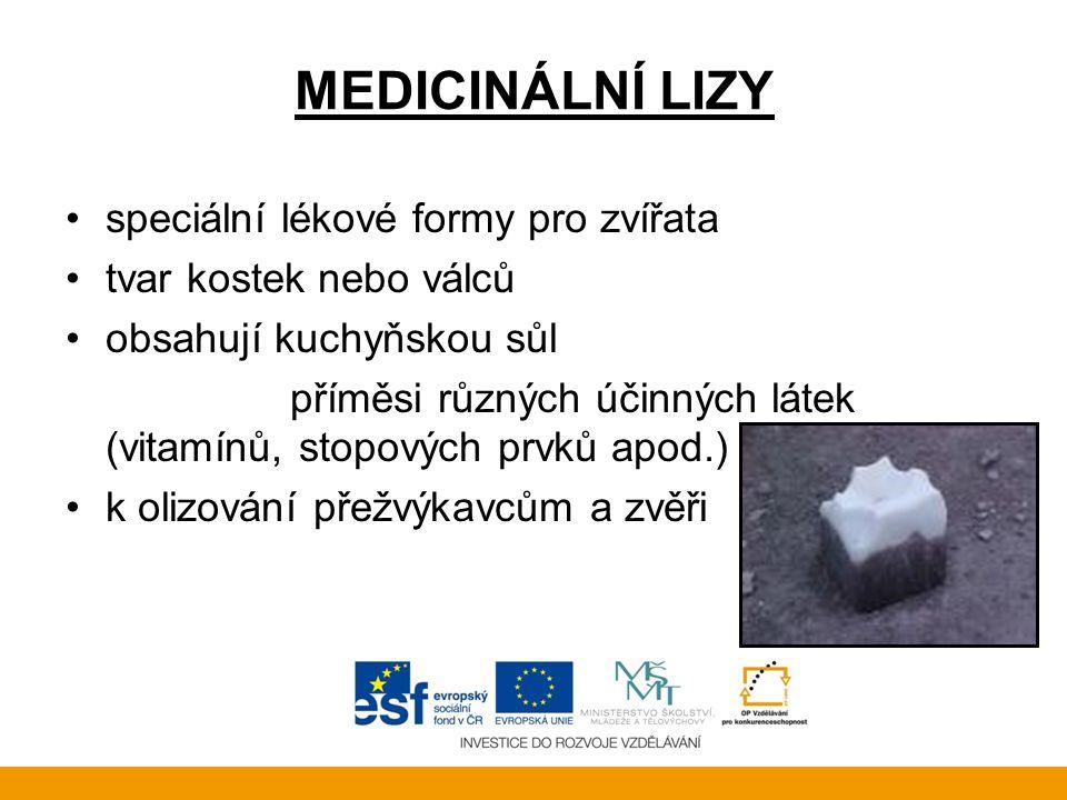 MEDICINÁLNÍ LIZY speciální lékové formy pro zvířata