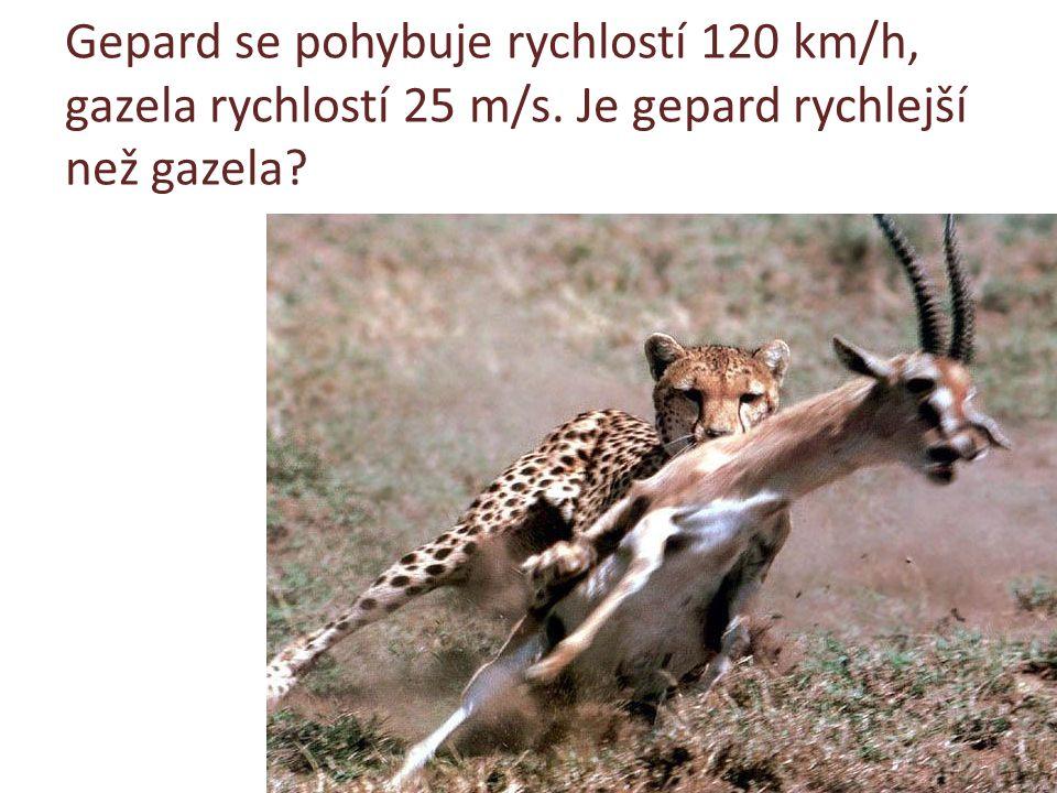 Gepard se pohybuje rychlostí 120 km/h, gazela rychlostí 25 m/s