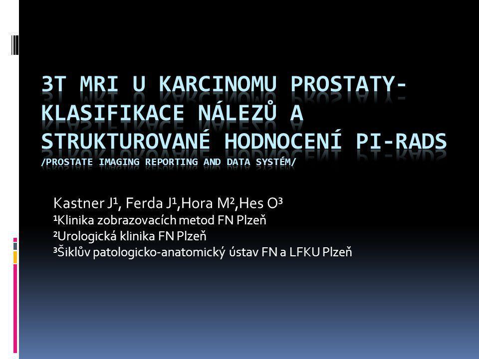 3T MRI u karcinomu prostaty-klasifikace nálezů a strukturované hodnocení PI-RADS /PROSTATE Imaging Reporting And Data Systém/