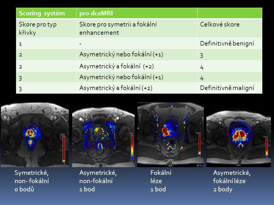 Scoring systém pro dceMRI. Skore pro typ křivky. Skore pro symetrii a fokální enhancement. Celkové skore.