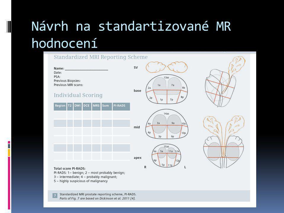 Návrh na standartizované MR hodnocení