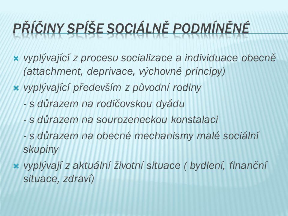 Příčiny spíše sociálně podmíněné