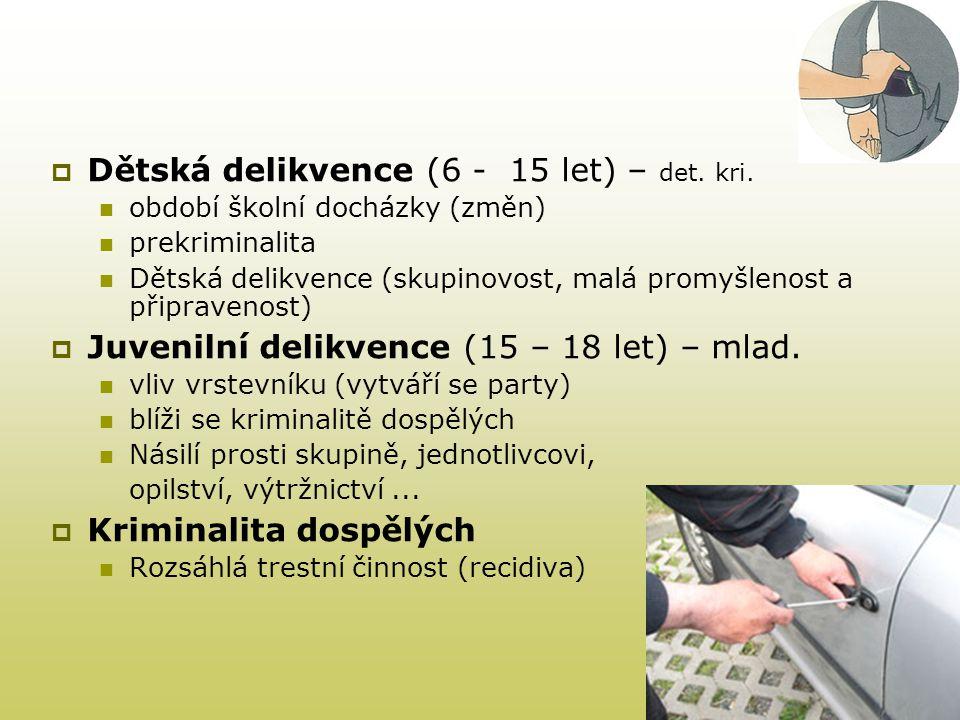 Dětská delikvence (6 - 15 let) – det. kri.