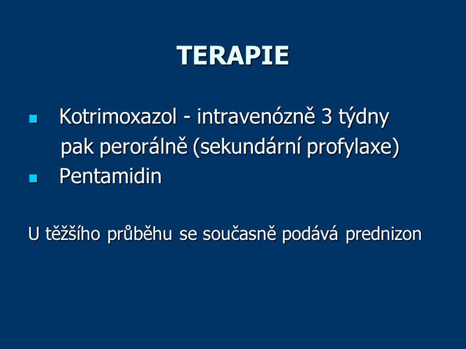 TERAPIE Kotrimoxazol - intravenózně 3 týdny