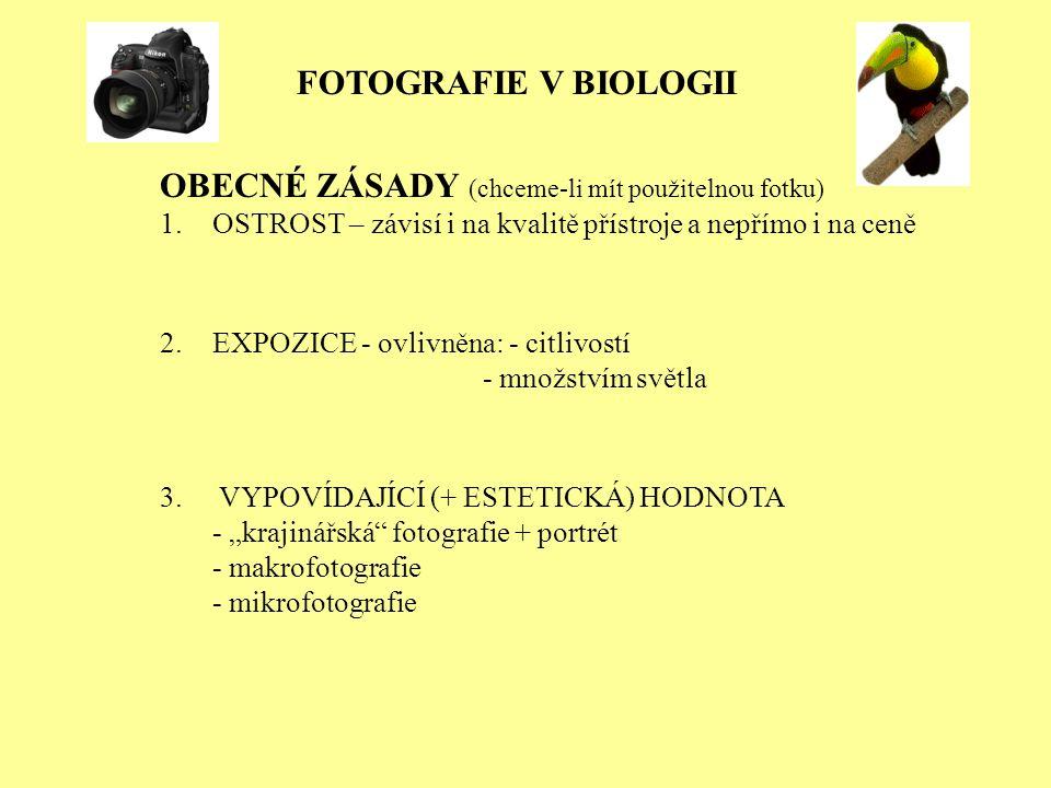 OBECNÉ ZÁSADY (chceme-li mít použitelnou fotku)