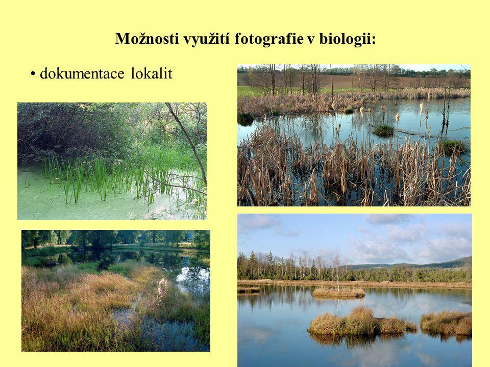 Možnosti využití fotografie v biologii: