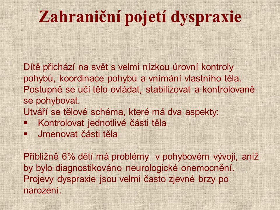 Zahraniční pojetí dyspraxie