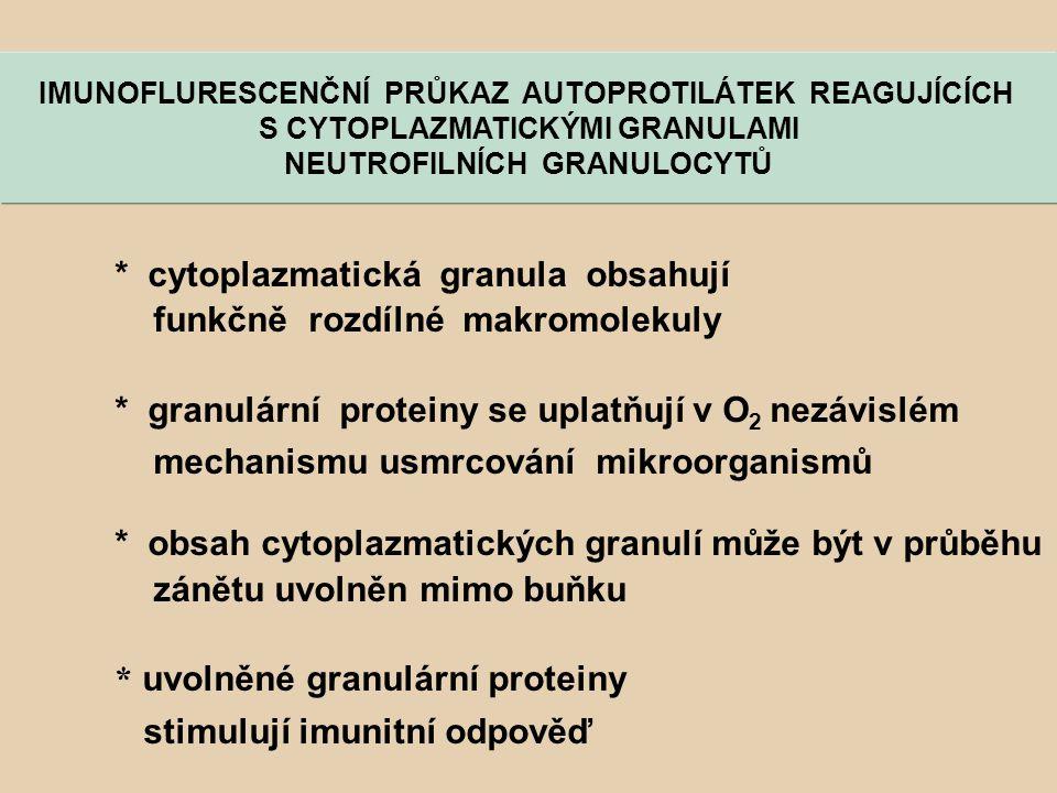 * cytoplazmatická granula obsahují funkčně rozdílné makromolekuly