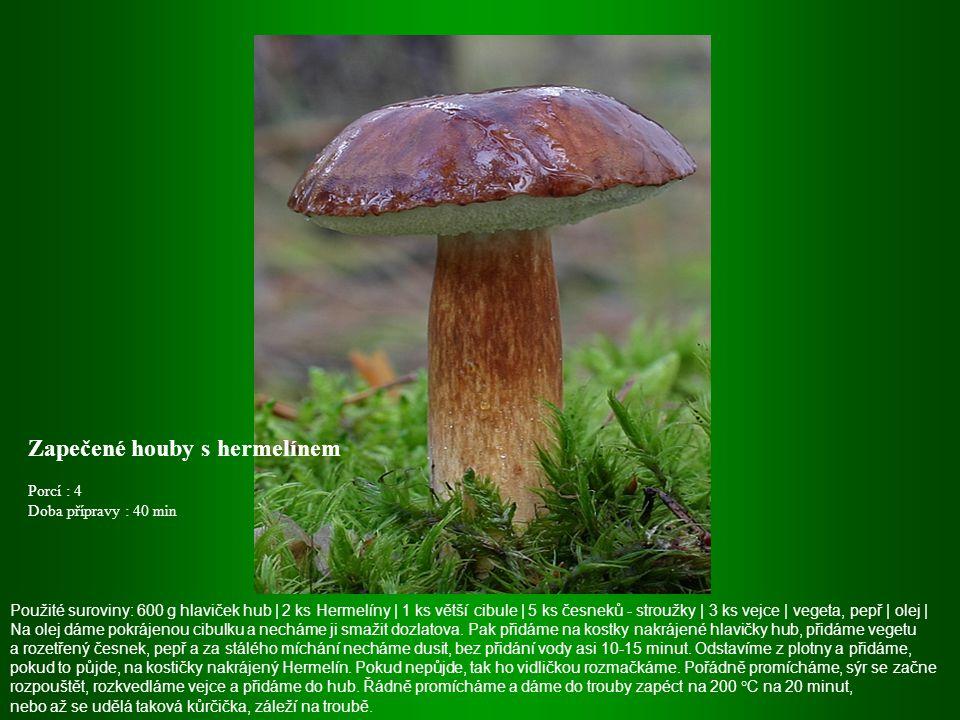Zapečené houby s hermelínem