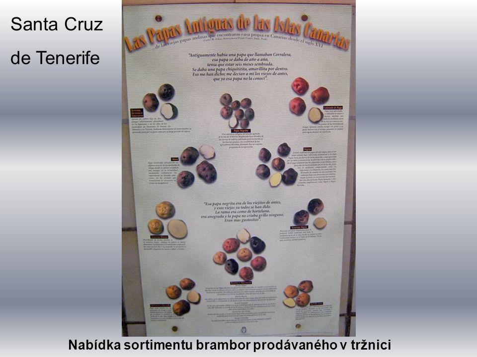 Santa Cruz de Tenerife Nabídka sortimentu brambor prodávaného v tržnici
