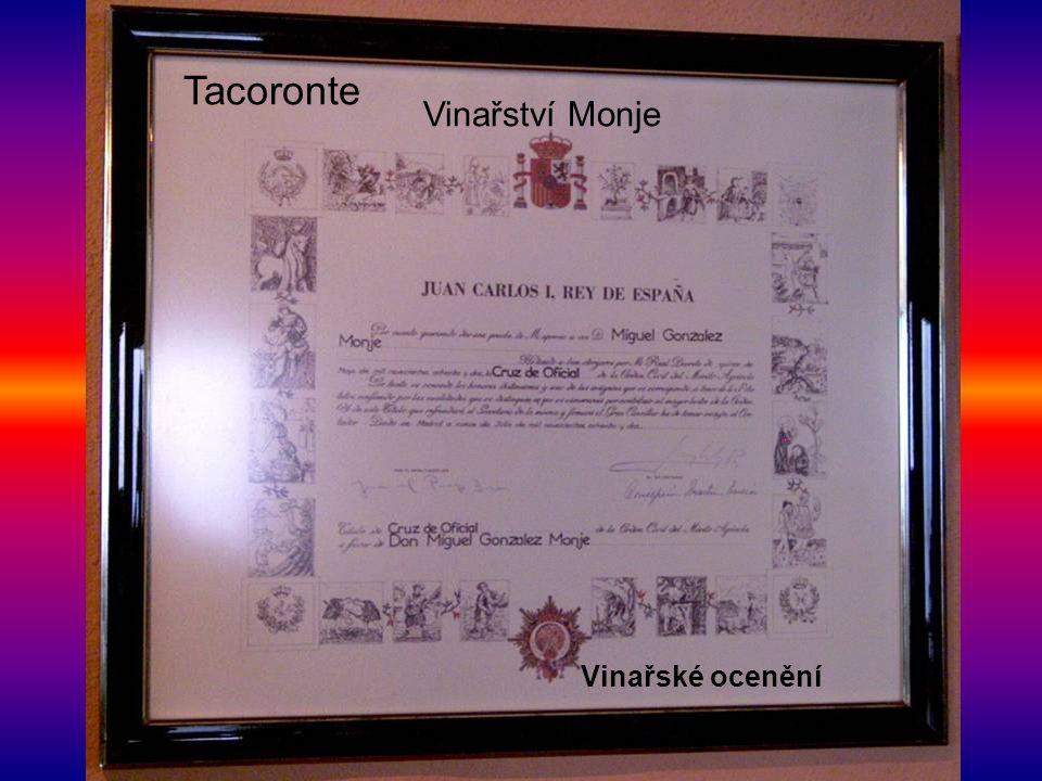Tacoronte Vinařství Monje Vinařské ocenění