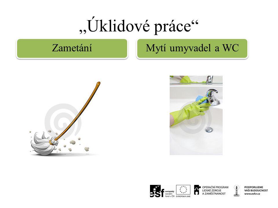 """""""Úklidové práce Zametání Mytí umyvadel a WC"""