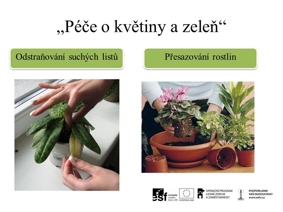 """""""Péče o květiny a zeleň"""