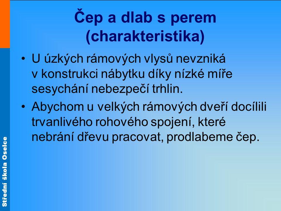 Čep a dlab s perem (charakteristika)