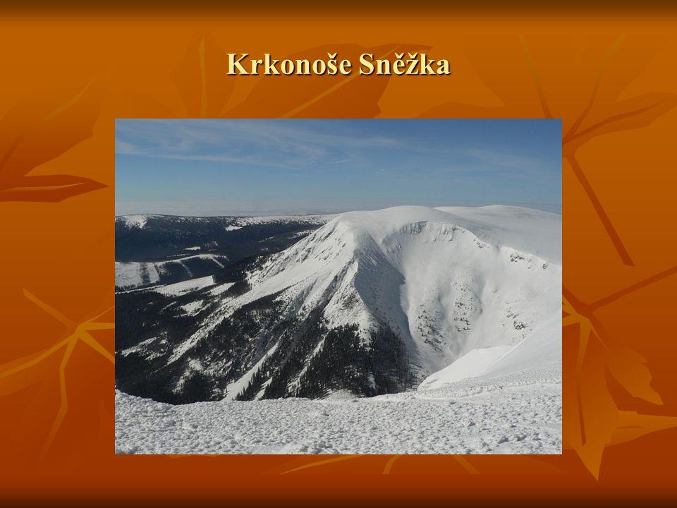 Krkonoše Sněžka
