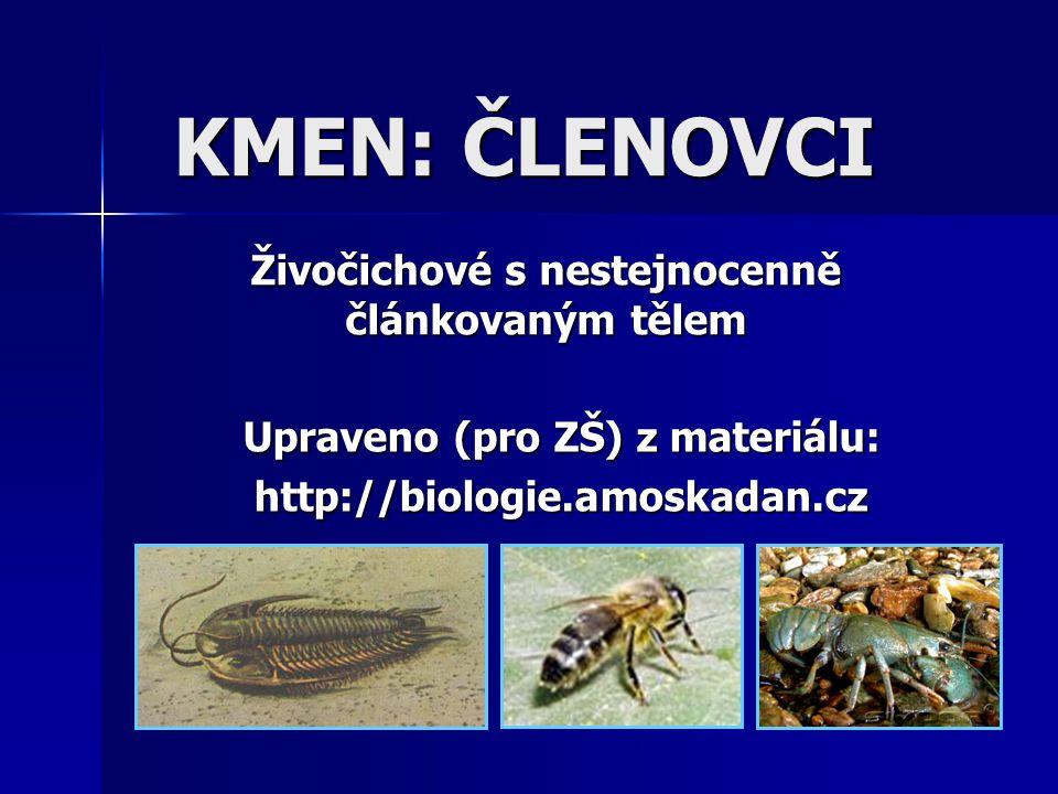 Upraveno (pro ZŠ) z materiálu: http://biologie.amoskadan.cz