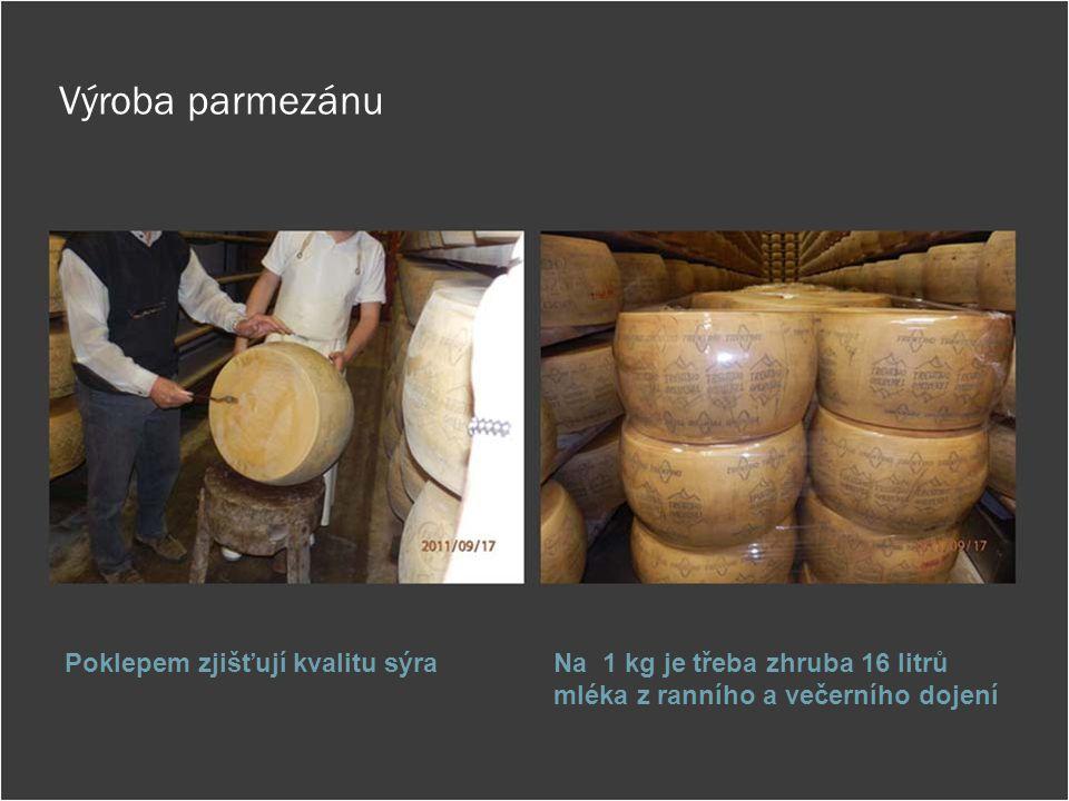 Výroba parmezánu Poklepem zjišťují kvalitu sýra