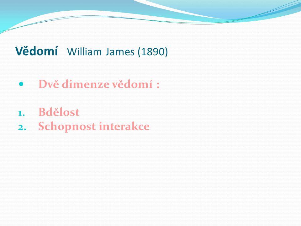 Vědomí William James (1890)